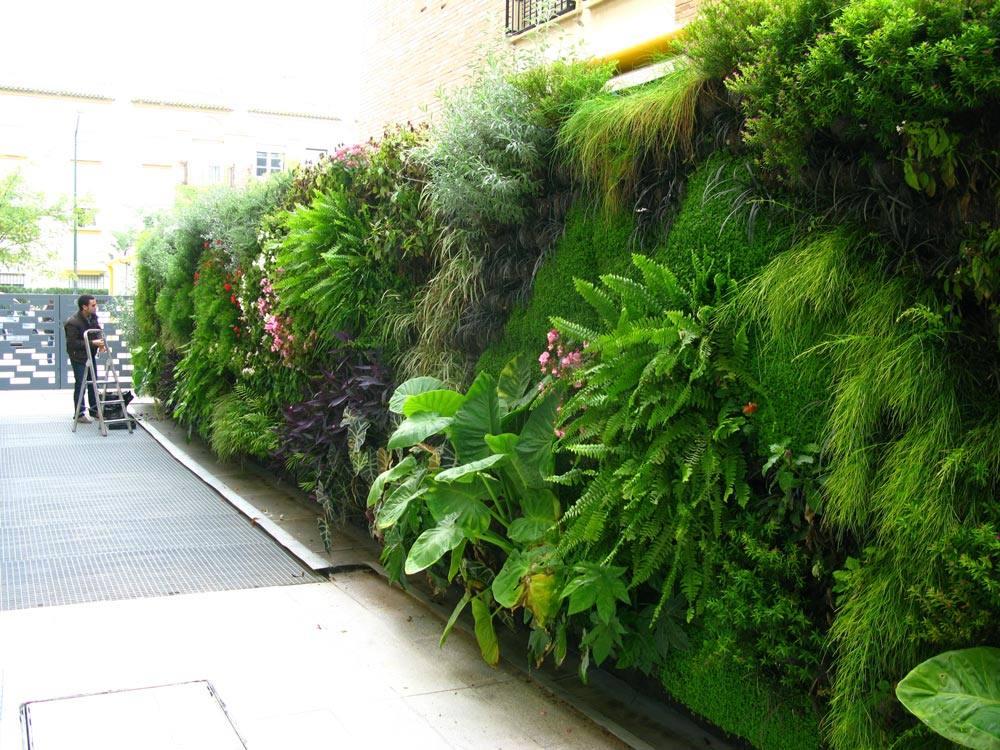 Jardines verticales de Terapia Urbana