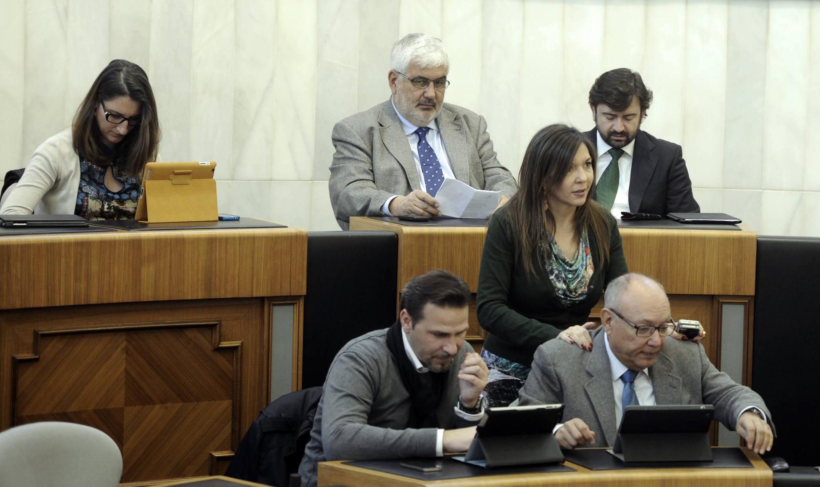 Pleno de la Diputación de Alicante